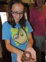 laurel with snake